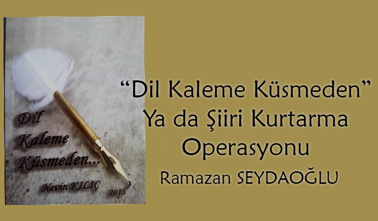 """""""Dil Kaleme Küsmeden"""" Ya da Şiiri Kurtarma Operasyonu / Ramazan Seydaoğlu"""