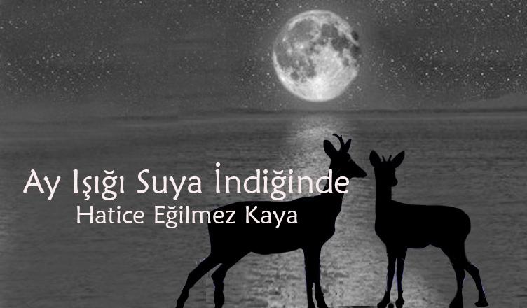Ay Işığı Suya İndiğinde / Hatice Eğilmez Kaya