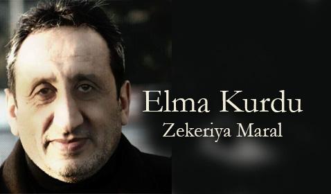Elma Kurdu / Zekeriya Maral