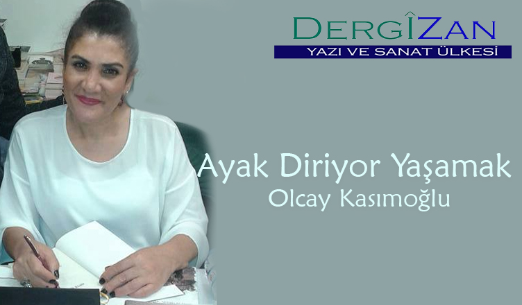 olcayy