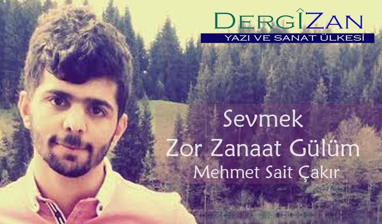 Sevmek Zor Zanaat Gülüm / Mehmet Sait Çakır