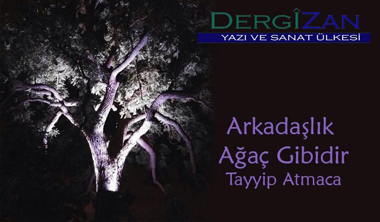 Arkadaşlık Ağaç Gibidir / Tayyip Atmaca