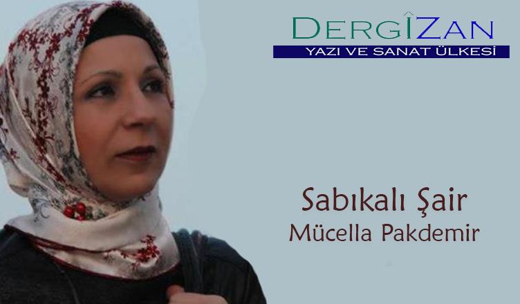 Sabıkali Şair / Mücella Pakdemir