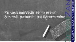 Öğretmenim / Hatice Türkmen Yurtseven