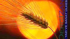 Bir Buğday Tanesi / Gürhan Gürses