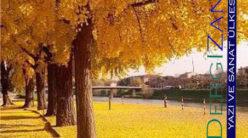 Yeşil Bakişli Mabet Ağacı / Serpil Öztürk Özküçük