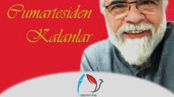 Cumartesiden Kalanlar / M. Faruk Habiboğlu