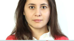 Qelem / Sefa Veliyeva